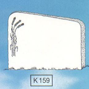 Bild på K159