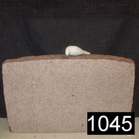 Bild på Lagersten 1045